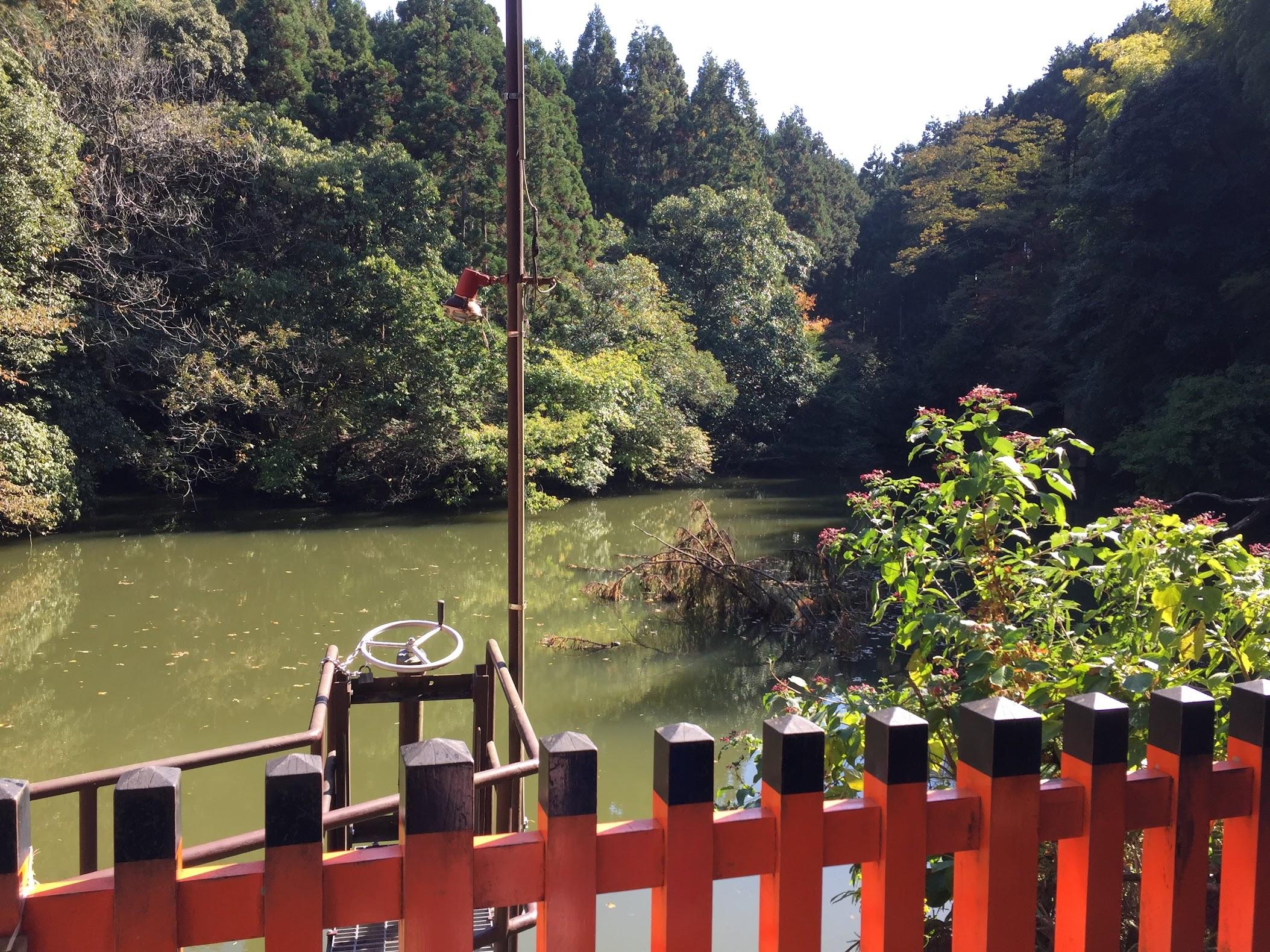 Danau di Fushimi Inari