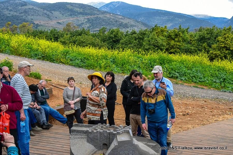 Экскурсия на Голанские высоты в природный и археологический заповедник Тель Дан с гидом в Израиле Светланой Фиалковой.
