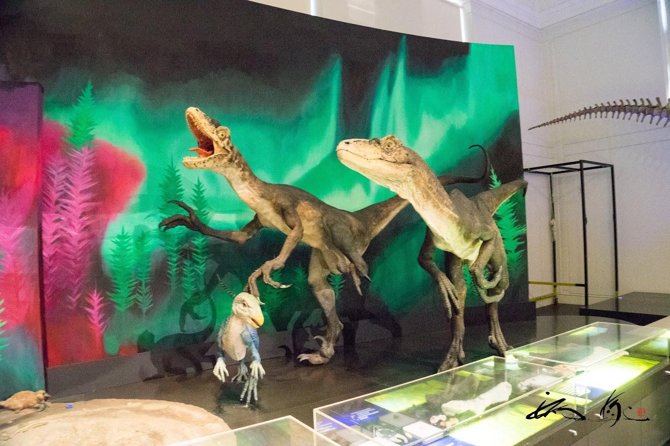 恐竜のイミテーション