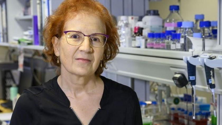 Del Val coordina 150 equipos de investigación sobre el coronavirus.