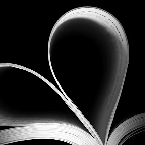 The Love II by Mohd Norsabree Sailan - Products & Objects Education Objects ( love, amatuer, miss you, sabree, simple, art, book, dark art, you, pwcstilllife )