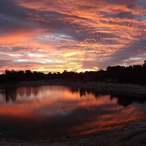 awesome sunset by Justine McGrath - Landscapes Sunsets & Sunrises ( water, clouds, reflection, bush, fire,  )
