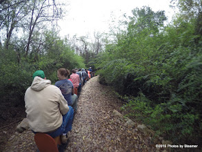 Photo: More woods - HALS Public Run Day 20150321 Bill Smith Photo