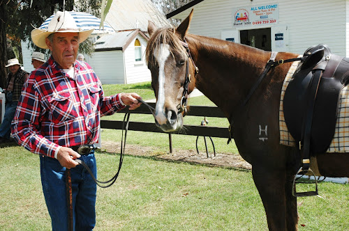 John Barton and his Australian stockhorse Stella at the West Anglican hall polling booth on Saturday.