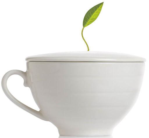 Vit tekopp i porslin - café cup - Tea Forté