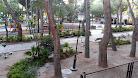 Panorámica del Parque Municipal de Aguadulce, donde anidan los martinetes.
