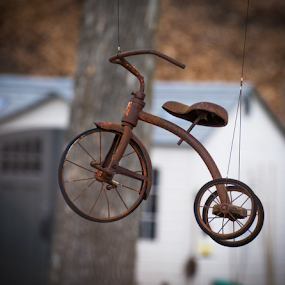 Flying Tricycle by Robert George - Artistic Objects Antiques (  )