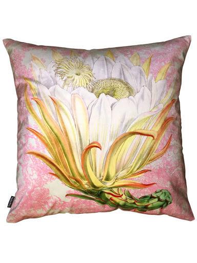 Protea Pink Toile 50x50
