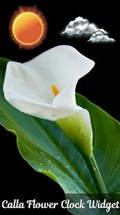 kala květina hodiny widget - náhled