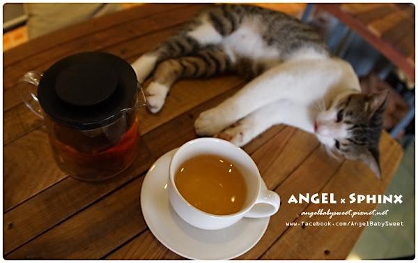 「貓店長」台東|停下腳步喝杯Cafe or tea與貓作伴 ★ 走走池上 @ 安小揪 の 童言童語