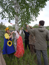 Photo: Tying ribbons to a birch tree