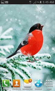 Snowy Red Bird LWP screenshot 2