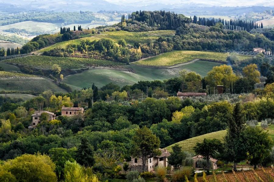 Tuscany by Nadya Slavova - Landscapes Travel ( tuscany, view, travel photography )
