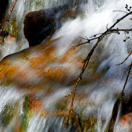 ResFalls by Kathryn  Flynn - Nature Up Close Water ( #water #falls #water#falls #landscapes )
