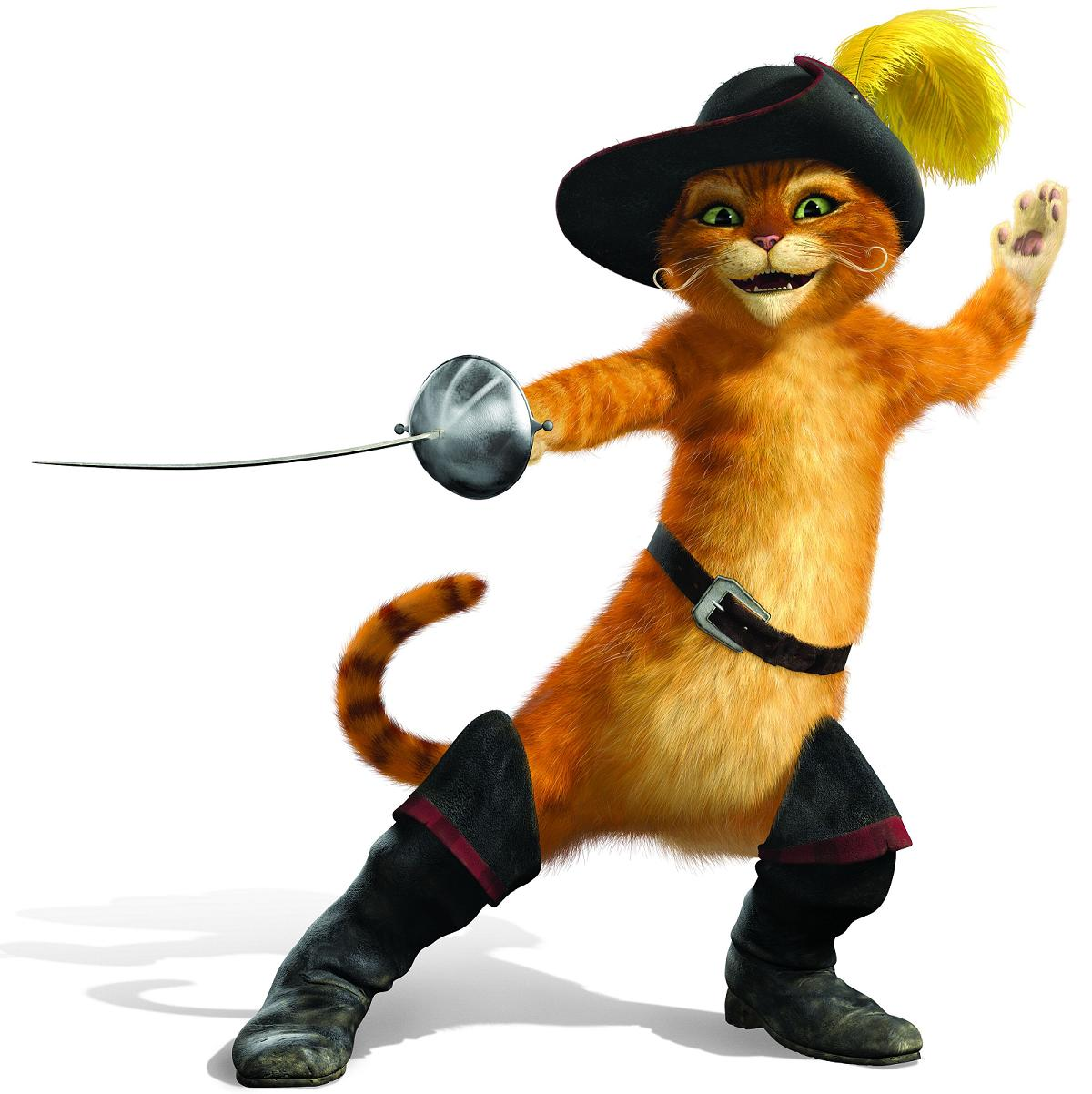 Image of an unknown ninja cat