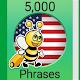 Speak American English - 5000 Phrases & Sentences Download on Windows