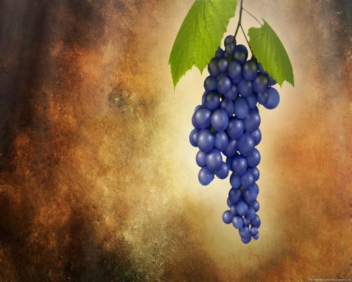 無料解谜Appのフルーツフルーツジグソーパズル|記事Game