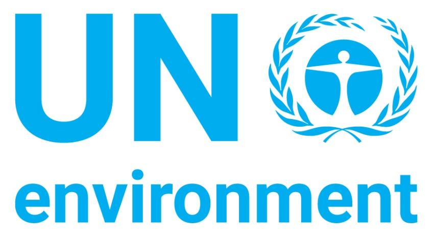 Image result for un environment