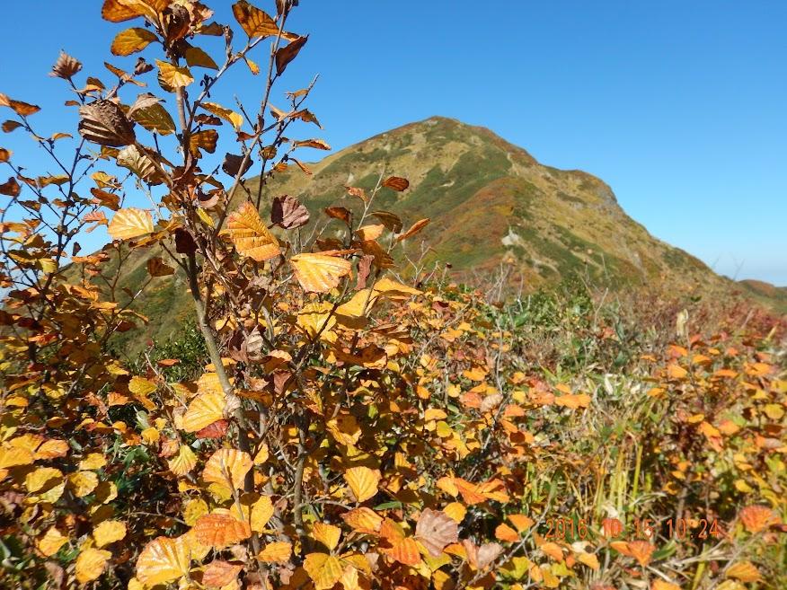 Mt. Echigo-sanzan thumbnails No.11
