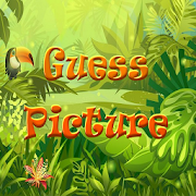 Guess Picture