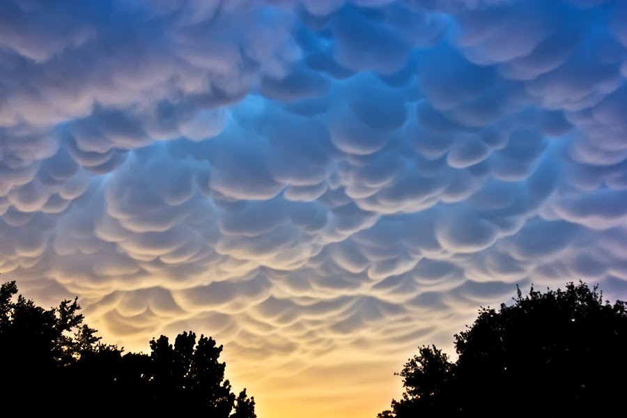 Buttermilk Sky by Roger Armstrong - Landscapes Cloud Formations ( mammatus clouds, clouds, sky, nature, beauty, storms )