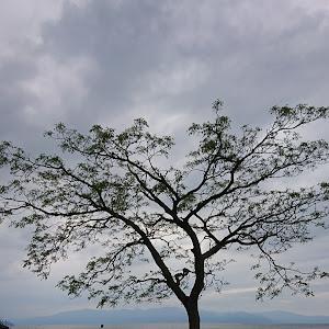 S660 JW5 のカスタム事例画像 mori-moriさんの2020年05月22日18:20の投稿