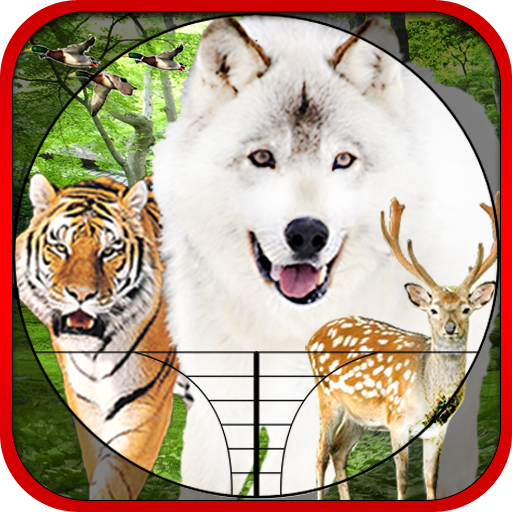 Hunting Animals & Birds