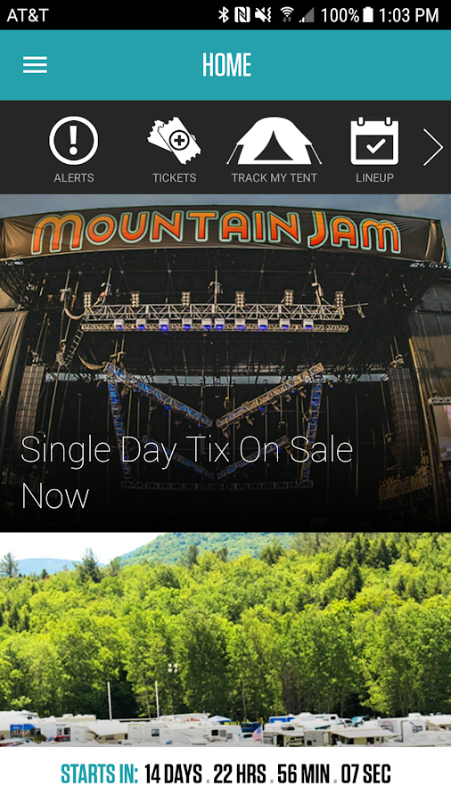 Mountain Jam Festival- screenshot