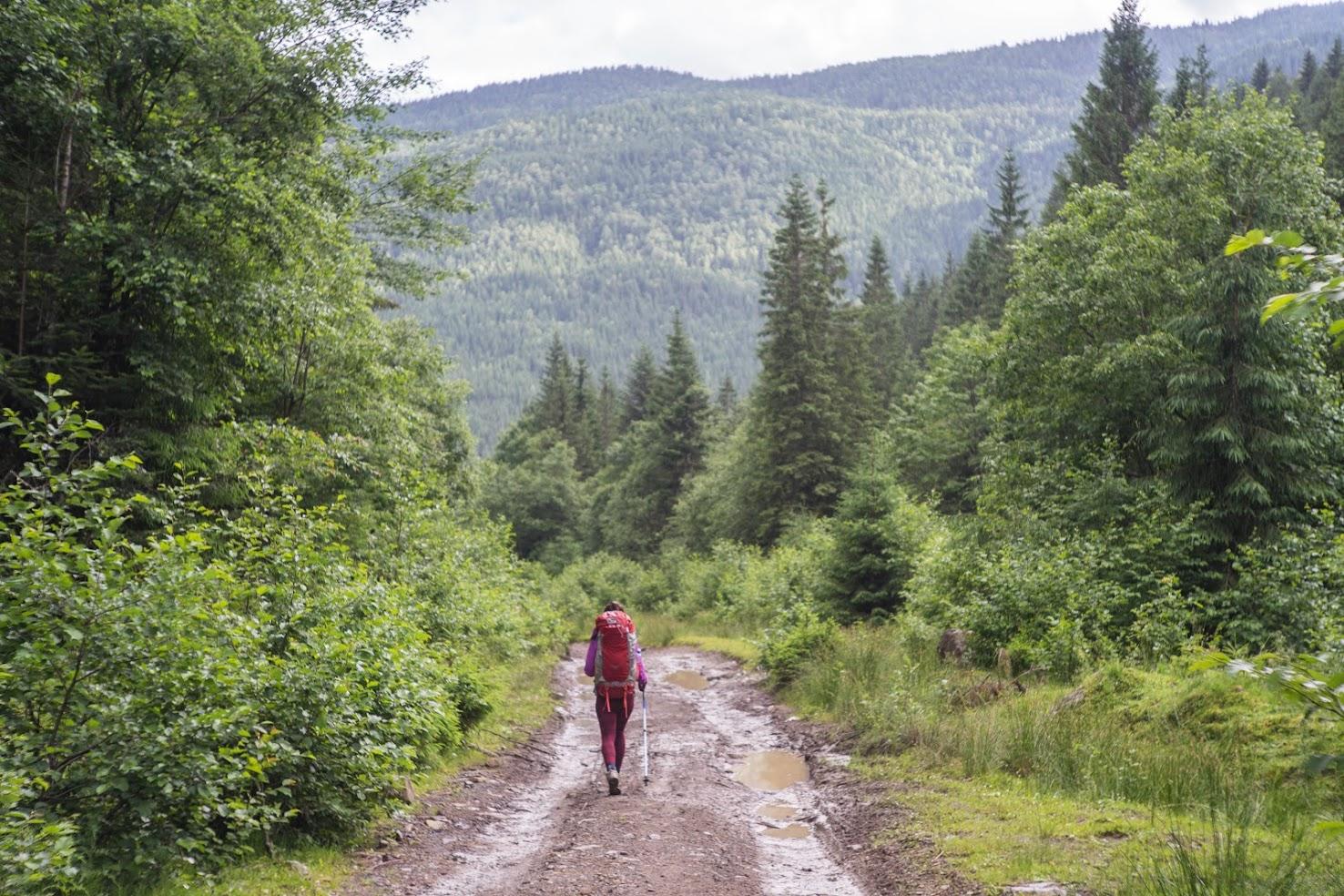 Дорога до Бистриці