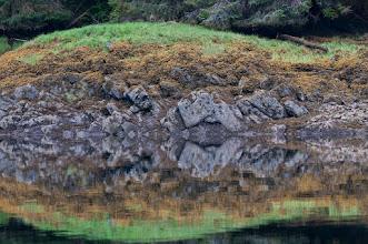Photo: Shore reflections