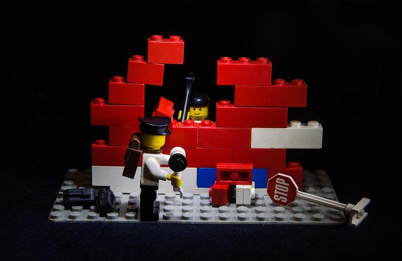 Mai più divisi dal muro di Primula Vico