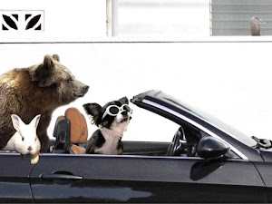 335i Cabriolet  2009年中期型のカスタム事例画像 カブリ寄りさんの2020年08月21日00:03の投稿