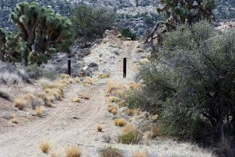 Photo: Illegal road?