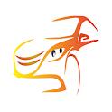 Auto Minas Proteção Veicular icon