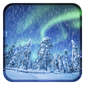 Aurora Winter Live Wallpaper