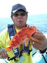 Photo: ・・アラカブも! 残念ながら真鯛は上がりませんでしたが、次またリベンジしましょう!  お待ちしております!