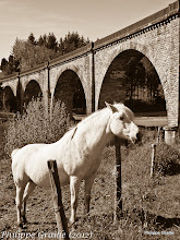Photo: Viaduc - Ligne de chemin de fer Paris Toulouse - Cheval