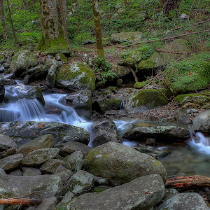 Smoky Mountain Stream 45 (1).jpg