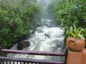 Photo: The Papallacta stream