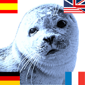 Blueseal Dictionary German English Spanish French