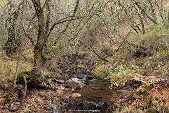 Photo: Ruta del Desfiladerro del Riaza. Ríofrío de Riaza. Segovia. Filtro: Polarizador