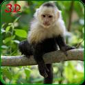 Monkey Simulator 3D icon