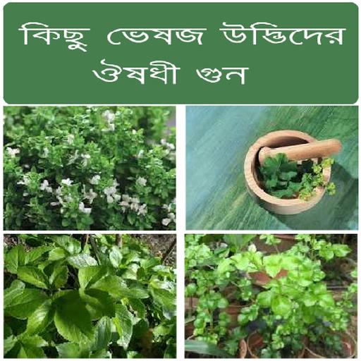 Herbal Plant Medicine (Bangla) - Apps on Google Play