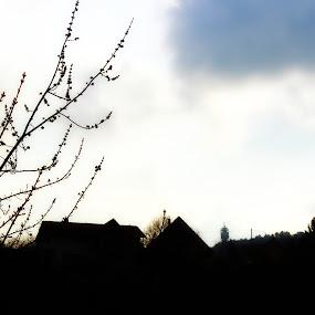 by Pete Jones - Landscapes Weather
