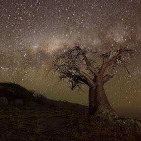 star shift by Fanie Weldhagen - Landscapes Starscapes