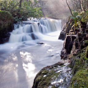 Clare Glens  by Helen Quirke  - Landscapes Waterscapes ( limerick, ireland, water falls, landscapes,  )