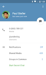 Telegram APK screenshot thumbnail 12