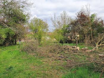 terrain à Saint-Rustice (31)