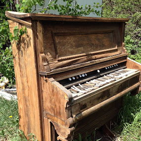 Old pump organ by Connie Smith - Artistic Objects Antiques