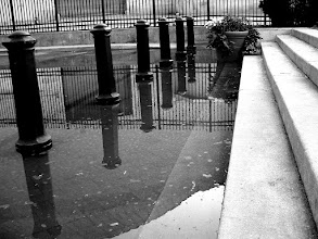 Photo: Reflections of Prince George | End of Prince George Street underwater in Annapolis, MD. © 2006 Ryan Lynham